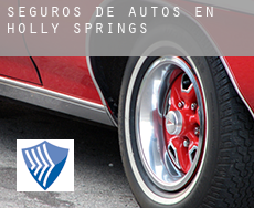 Seguros de autos en  Holly Springs