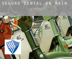 Seguro dental en  Maine